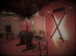Studio 5 Wiltshire